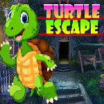 Turtle Escape Games4King