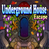 Underground House Escape Games4King