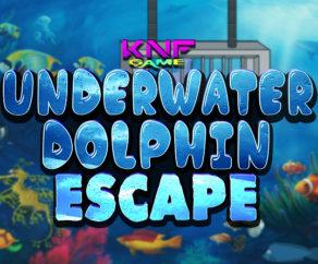 Underwater Dolphin Escape KNFGames