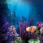 Underwater Fun Escape FunEscapeGames