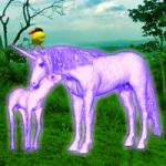 Unicorn Fantasy Forest Escape Games2Rule
