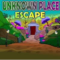 Unknown Place Escape