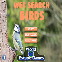 WEG Search Birds WorldEscapeGames