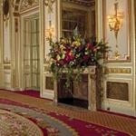 Warwick Palace Crown Escape GelBold