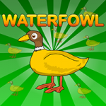 Waterfowl Rescue Games2Jolly