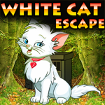 White Cat Escape Games4King