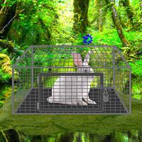White Rabbit Escape WowEscape