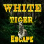 White Tiger Escape 8BGames