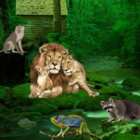 Wild Animals Forest Escape Games2Rule