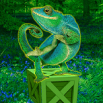 Wild Chameleon Forest Escape Games2Rule