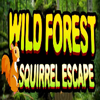 Wild Forest Squirrel Escape KNFGames