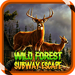 Wild Forest Subway Escape ZooZooGames