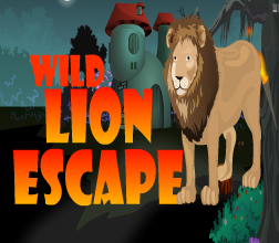 Wild Lion Escape GamesNovel