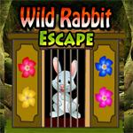 Wild Rabbit Escape Games 4 King