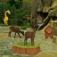 Wildlife Sanctuaries Escape HiddenOGames
