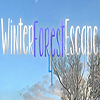 Winter Forest Escape 4