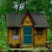 Wood House Pig Escape OnlineEscape24