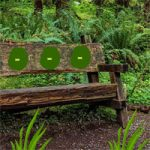 Wooden Bench Forest Escape BigEscapeGames