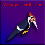 Woodpecker Rescue Games2Jolly