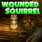 Wounded Squirrel Escape AvmGames