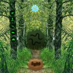 Wow Forest Escape WowEscape