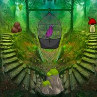 Zooo Bird Escape ZoooGames