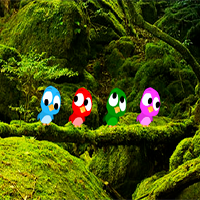 Zooo Toucan Escape ZoooGames
